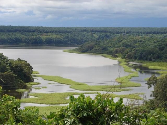 image Agriculture et agro-industrie : Ces espaces encore à prendre dans le Moungo, le Nkam et la Sanaga Maritime