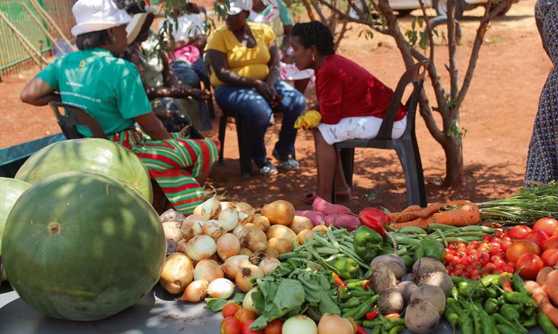 image Agro-industrie: Et si on profitait de tous ces fruits du Mbam