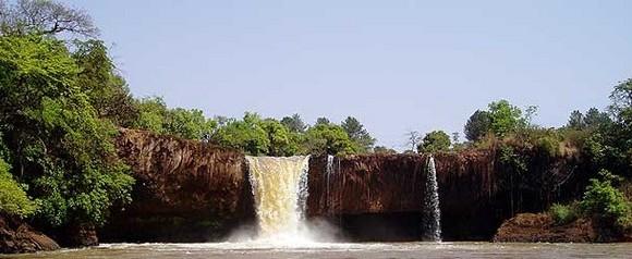 investir dans la région de l'Adamaoua